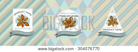 Three Colored Labels With Blackberry Lily Hand Drawn Illustration