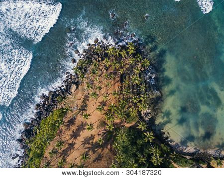 Aerial Top View Of Scenic Coconut Tree Hill In Mirissa, Sri Lanka. Coconut Tree Hill In Sri Lanka. C