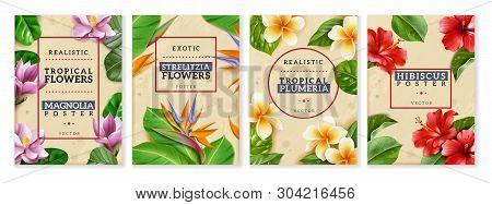Raelistic Exotic Flowers Vertical Posters Set. Four Vertical Posters With Isolated Tropical Flowers