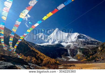 Colorful Forest And Snow Mountain At Yading Nature Reserve In Autumn Season, The Last Shangri La, Da