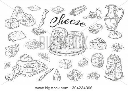 Cheese Sketch. Hand Drawn Milk Products, Gourmet Food Slices, Cheddar Parmesan Brie. Vector Breakfas