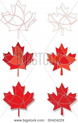 Canadian Emblem Maple Leaves