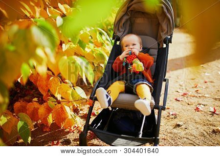 Adorable Little Girl In Bright Stylish Clothes Sitting In Pushchair Outdoors And Touching Colorful L