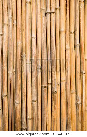 quality natural bamboo background