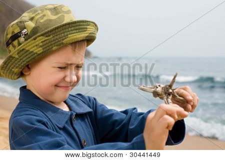 The little boy has blinked the eyes and looks at a toy from a tree.
