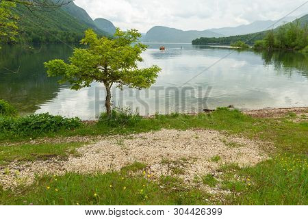 Colorful Spring Panorama Of The Bohinj Lake At Ukanc. Picturesque Moning Scene In The Triglav Nation