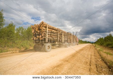 Forest industry.Trailer truck loaded with wooden beams traveling on a dirt road. Russia.