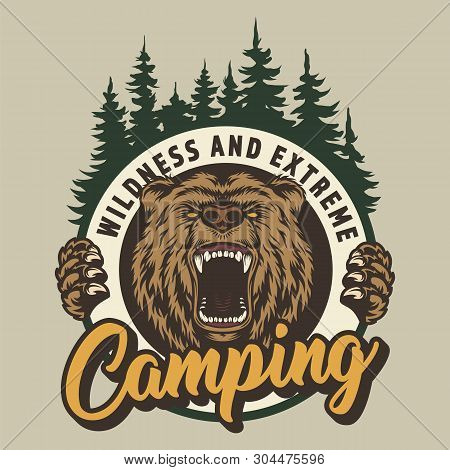 Vintage Colorful Camping Round Print With Ferocious Bear Head And Forest Isolated Vector Illustratio