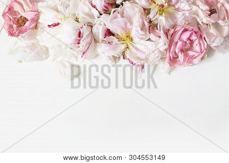 Close Up Of Fading Peonies And Pink Rose Flowers Petals Isolated On White Table Background. Floral F