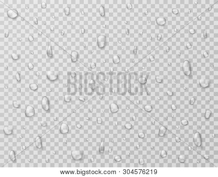 Water Drops Isolated. Rain Drop Splashes, Droplets On Glass Transparent Window. Raindrop Vector Text