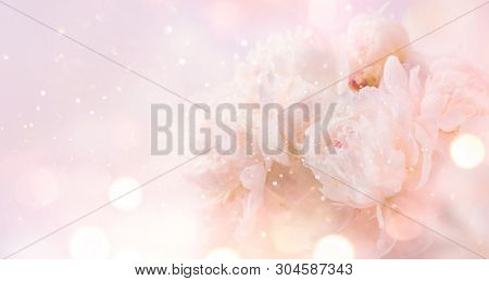 Beautiful pink peony bouquet art background. Blooming pastel peony or roses border flowers card design. Wedding backdrop, Valentine's Day concept. Birthday bouquet, bunch. Blossom, flower closeup