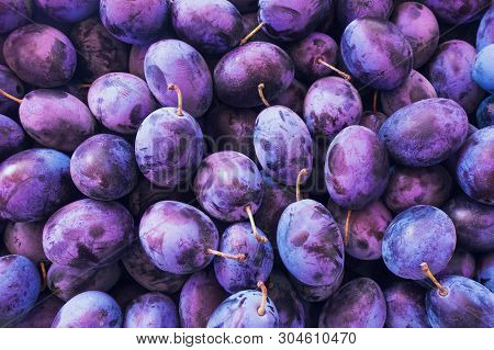 Fresh Plums. Blue And Violet Plums Background Texture.