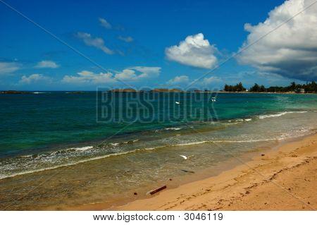 Vega Baja Beach, Pr, Usa