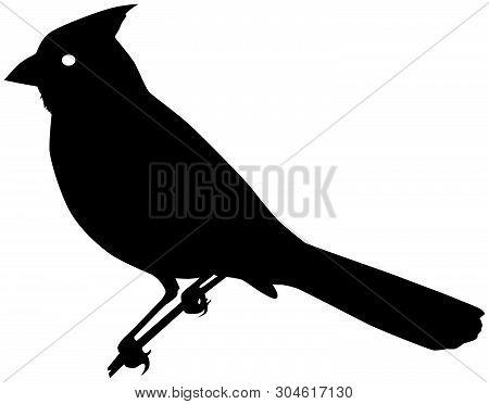 Cardinal Bird Black Vector Silhouette Clip Art