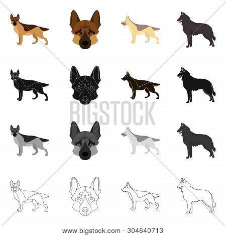 Vector Design Of Sheepdog And Sheltie Logo. Collection Of Sheepdog And Shepherd Stock Vector Illustr