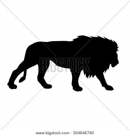 Vector Black Silhouette Of Male Lion Isolated On White Background