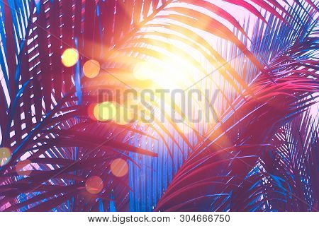 Copy Space Pink Tropical Palm Tree On Sky Abstract Background. Summer Vacation And Nature Travel Adv