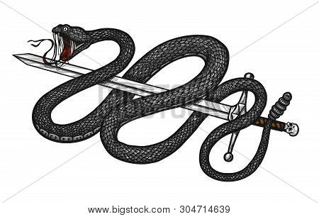 Rattlesnake In Vintage Style. Aggressive Viper Snake. Engraved Hand Drawn In Old Sketch For Sticker