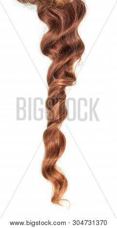 Beautiful Curls Light Brown Hair Isolated On White Background