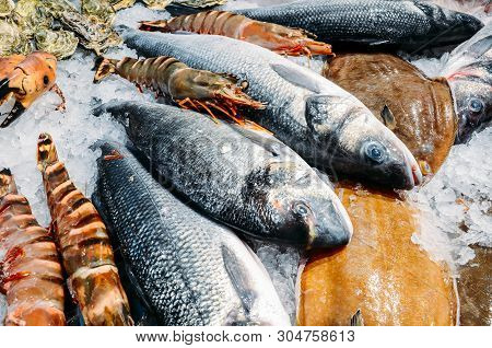 High Angle Still Life Of Variety Of Raw Fresh Fish Chilling On Bed Of Cold Ice In Seafood Market Sta