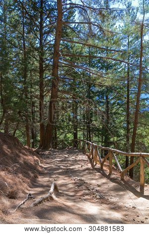 View Of The Trail With The Samaria Gorge On The Island Of Crete, Greece. Old Tall Trees In The Samar