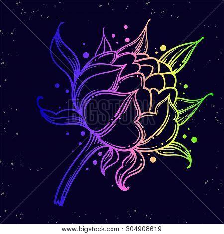 Peony Bud. Tattoo Rose Pion Flower.tattoo, Mystic Symbol. Boho Print.vector Illustration Art. Vintag