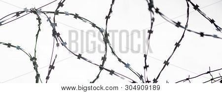 Barbed Wire On Country Border. Barbwire On Fence For Prohibition Of Illegal Aliens Crossing.
