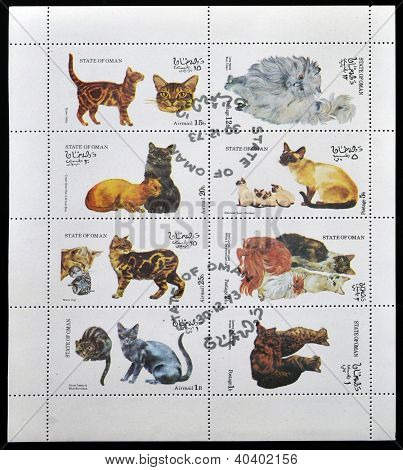 OMAN - CIRCA 1973: Collection stamps printed in State of Oman shows different cats circa 1973