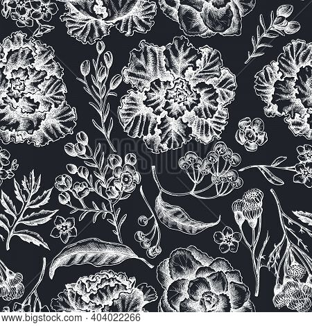 Seamless Pattern With Hand Drawn Chalk Wax Flower, Forget Me Not Flower, Tansy, Ardisia, Brassica, D
