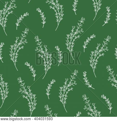 Seamless Pattern With Thyme Sprigs And Branches Line Art On Green Background