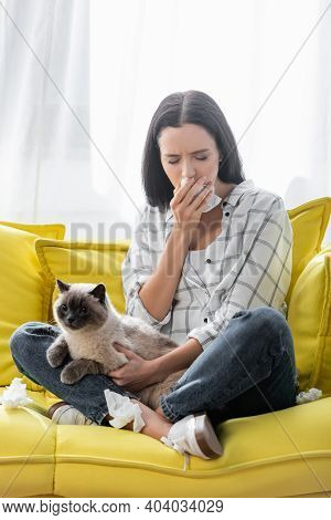 Allergic Woman With Closed Eyes Holding Paper Napkin While Sitting On Couch With Cat