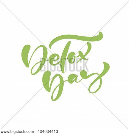 Detox Day Logo Calligraphy Lettering Text Poster In Doodle Style. Hand Drawn Green Brush Stroke For