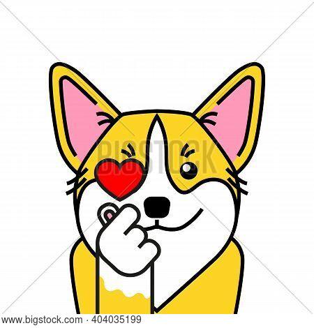 Cute Welsh Corgi Dog Loves K Pop