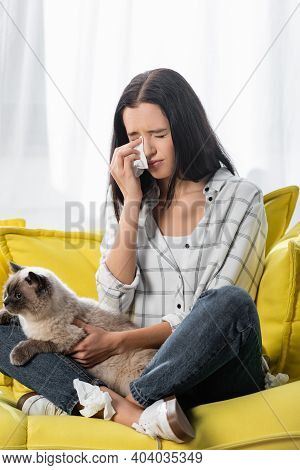 Allergic Woman Sitting On Sofa With Cat And Wiping Tears With Paper Napkin