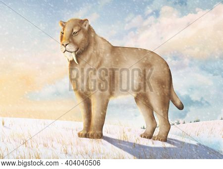 Saber-toothed Cat In The Cold Ice Age.