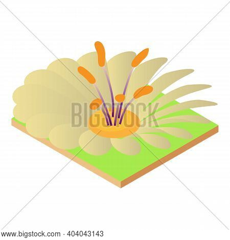 Unusual Flower Icon. Isometric Illustration Of Unusual Flower Vector Icon For Web