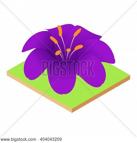 Purple Lily Icon. Isometric Illustration Of Purple Lily Vector Icon For Web
