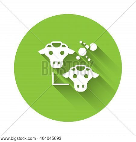 White Cloning Icon Isolated With Long Shadow. Genetic Engineering Concept. Green Circle Button. Vect