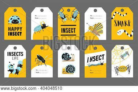 Special Tag Designs With Happy Insects. Funny Ladybug, May Beetle, Cockroach, Spider, Snail On Vivid
