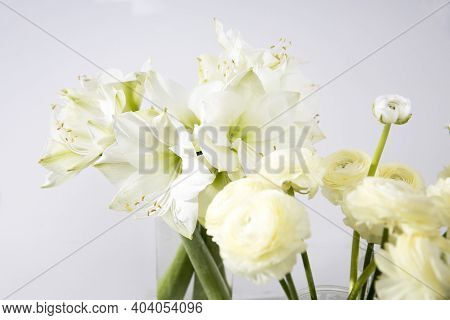 Bouquet Of White Lilies In A Tall Glass Vase On A Beige Table Against A Gray Wall. Copy Space. Fresh