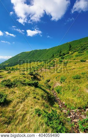 Mountain Landscape On A Summer Day. Trees On The Grassy Hill. Scenery Rolling Down The Valley In To