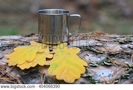 Abstract steel tourist cup on autumn dry oak leafs a log in the forest