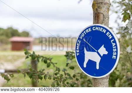 Blue Sign In The Countryside Authorizing The Walking Of Dogs With Leash