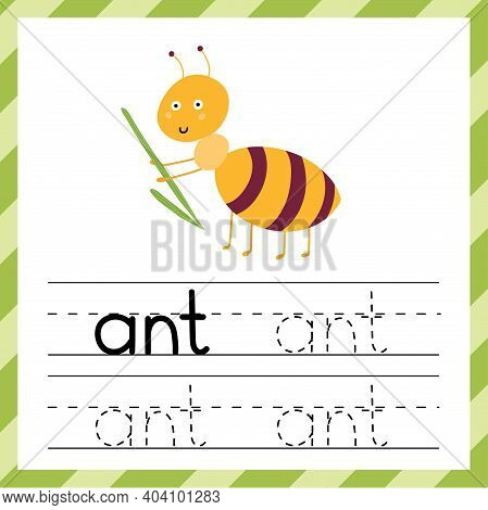 Tracing Worksheet With The Word -ant. Learning Material Or Flashcard For Kids