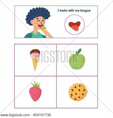 Five Senses Poster. Taste Sense Presentation Page For Kids
