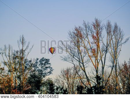 Hot Air Balloons Through Winter Trees On Blue Sky In Early Morning Light