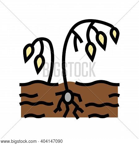 Drought Poverty Problem Color Icon Vector. Drought Poverty Problem Sign. Isolated Symbol Illustratio