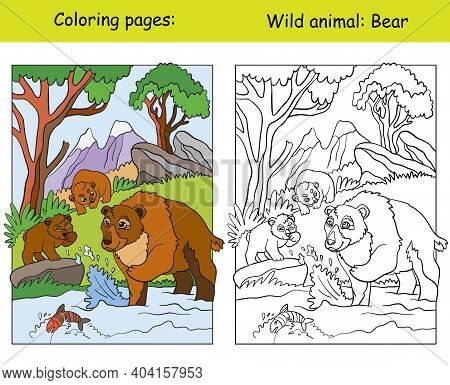 Vector Coloring Page With Cute Bears In Mountain Area. Cartoon Isolated Colorful Illustration. Color