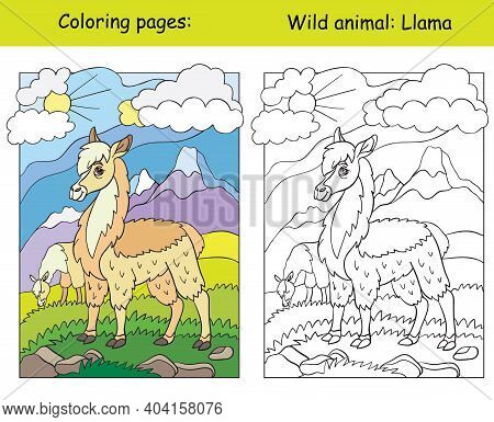 Vector Coloring Page With Cute Llama In Mountain Area. Cartoon Isolated Colorful Illustration. Color