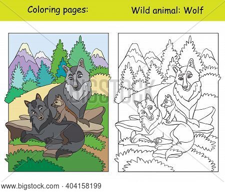 Vector Coloring Page With Cute Wolves In Mountain Area. Cartoon Isolated Colorful Illustration. Colo